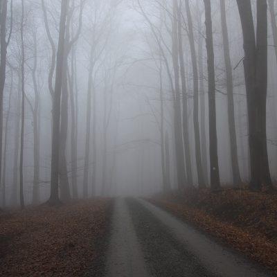 Weg zur Kipphornaussicht