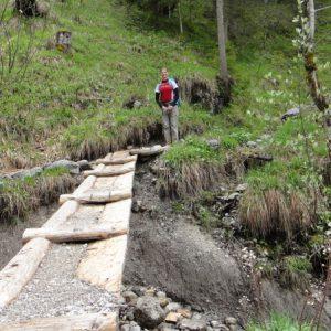 Waldwege ins Tal