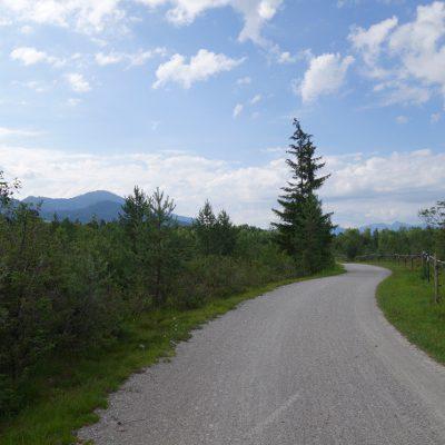Weg neben der Isar