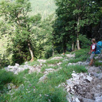 Weg bergab zur Jachenau