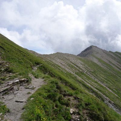 Der schmale Weg, der in Kehren ins Weitental führt