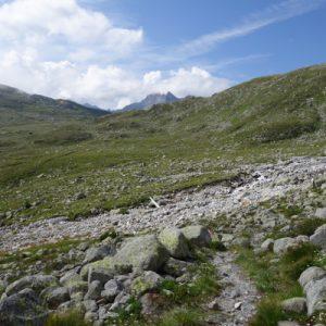 Kurz vor dem letzten österreichischen Hügel wurde es nochmal flacher