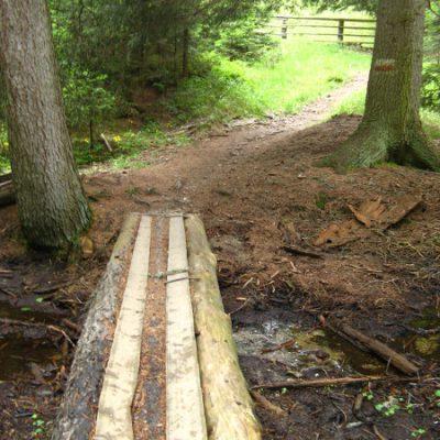 Kleine Brücke bevor es aus dem Wald geht