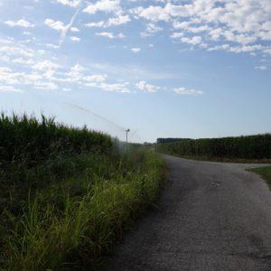 Umgeben von Feldern