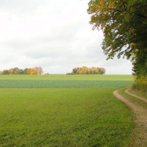 Noch 4 km bis zum Ziel