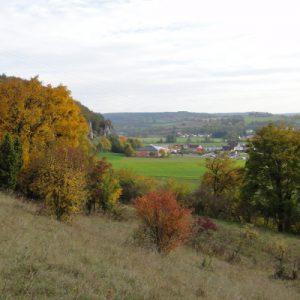 Blick auf Dollnstein