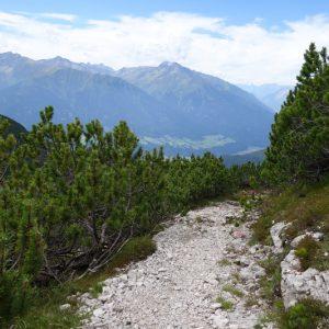 Weg zur Hütte nach dem Wald