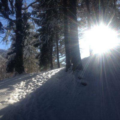 Sonne, Schnee, blauer Himmel