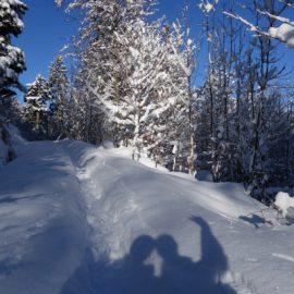 Winterwunderland am Tegernsee: Riederstein (1207m) und Baumgartenschneid (1449m)