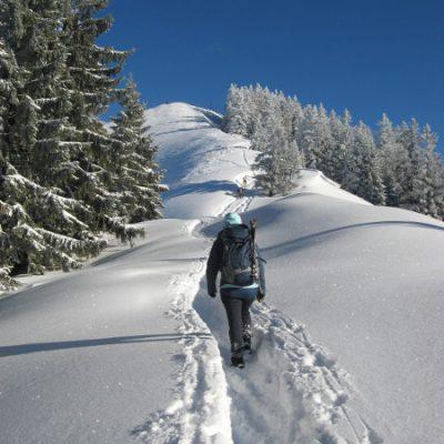 Wieder auf halbwegs festem Schnee
