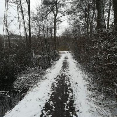 Nach erneutem Wintereinbruch