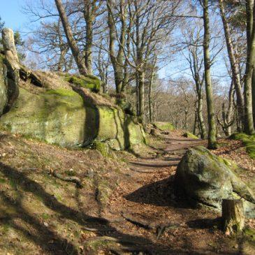 2muve-Wochenende: Laufen, wandern und bouldern