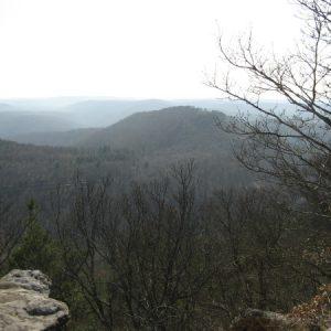 Aussicht vom Drachenfels