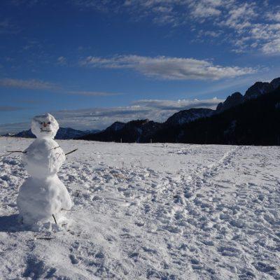 Schneemann auf dem Weg